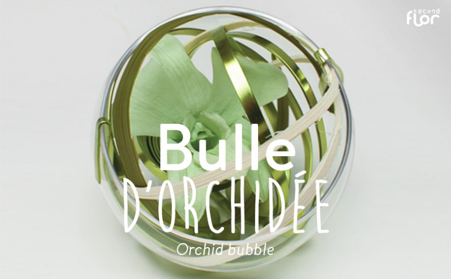 sn-diy_bulleorchidee-visuel-ok