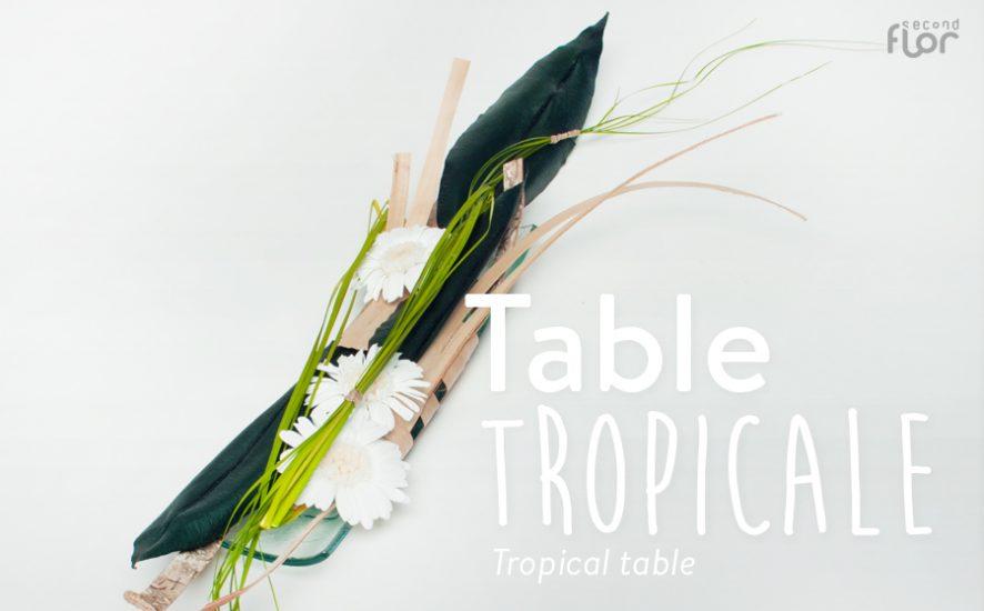 sn-diy_tabletropicale-imageune-ok
